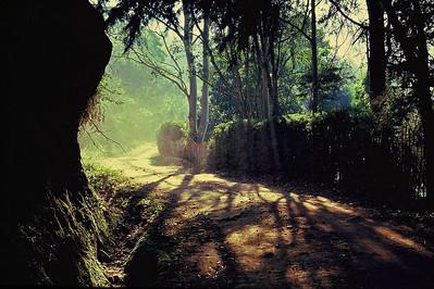 Estrada na Posse