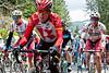 Levi Leipheimer, three time winner of the Amgen Tour of California