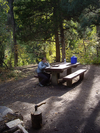 Great campsite along the old highway in Ten Sleep canyon.  It's closed for the winter, so it's free.