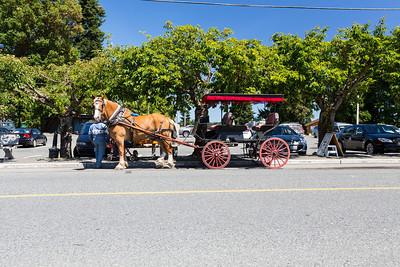 Horse Drawn Carriage. Chemainus, BC, Canada