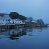 Foggy New Harbor coastline & fisherman