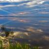 Mackay Island NWR in Virginia Beach