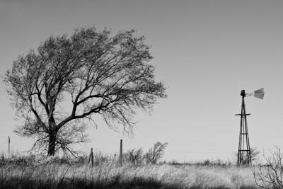 Hwy 83 near Wellington, TX