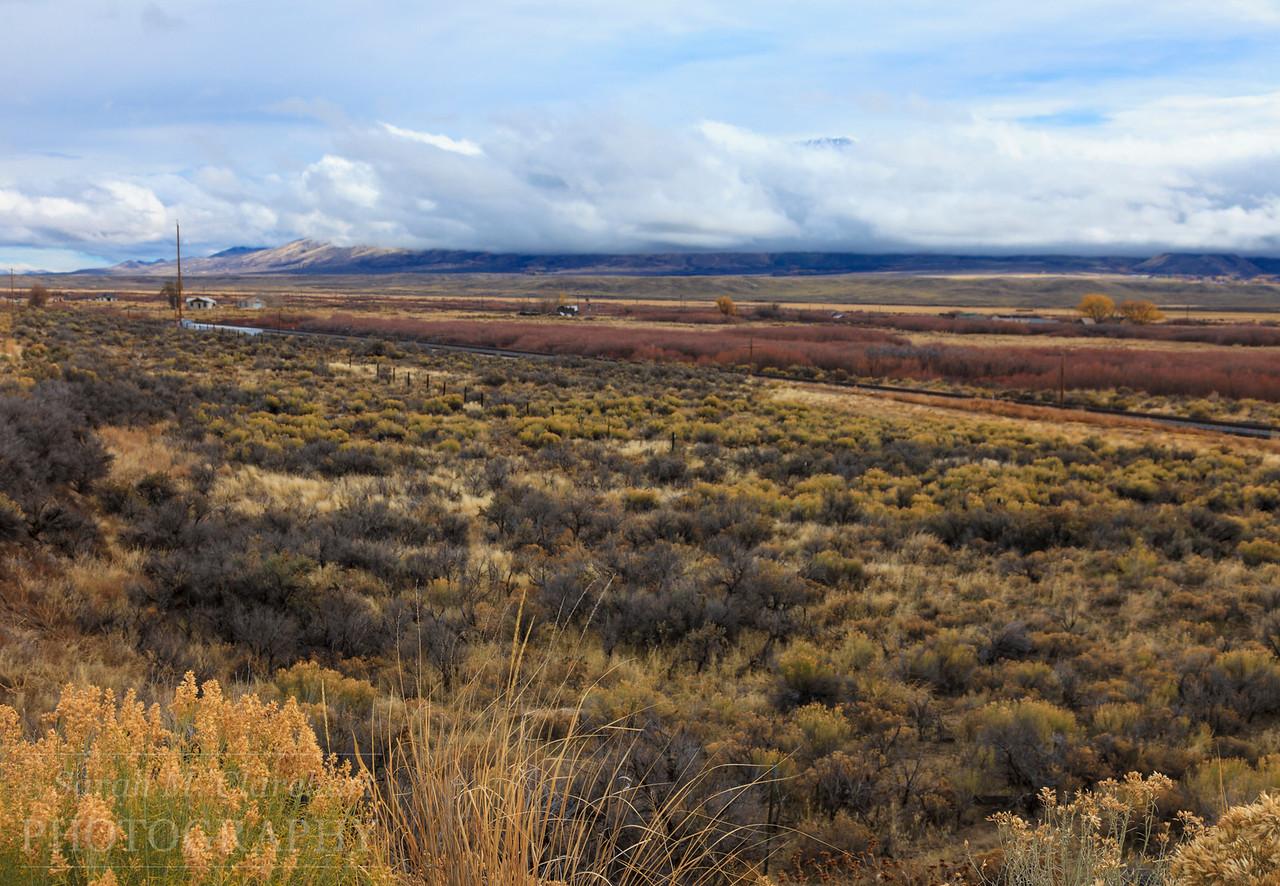 Nevada, getting close to Utah.