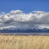 Antelope Island, Salt Lake City
