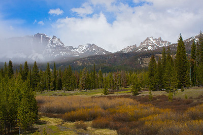 Bridger-Teton National Forest Wyoming.