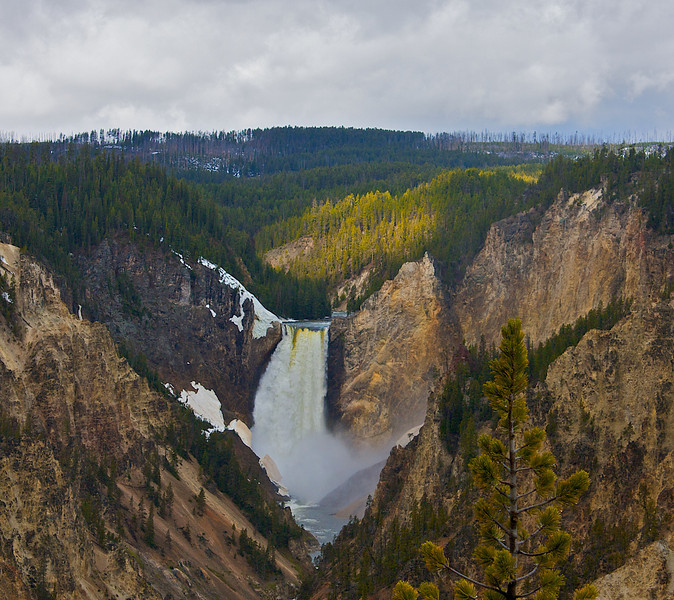 Lower Falls Yellowstone River. At this point I had been here for hours. I walked all the way to the falls and back on the left side. This is from Artist Point the only sun all morning lasted just seconds long.