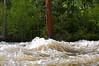 Tensleep Creek full of Spring melt water.
