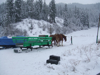 This was suppossed to be a romantic horse drawn sleigh ride in a winter wonderland.  The horse that pulls the carrage for 2 had a bad foot so we had to get pulled around in this big sleigh which really took away from the desired effect.