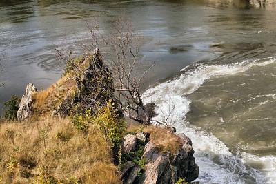Reversing Falls, , Saint John, New Brunswick