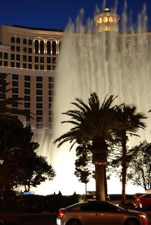 IDSA BOD Transition meeting - January 2009 - Las Vegas