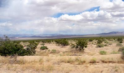 The Mojave desert.