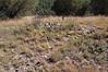Crumbled pit house walls.  Mimbres Indian Vista Ruins at Lake Roberts New Mexico.