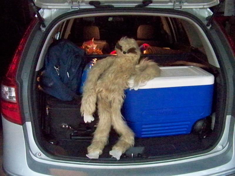Our hairy road trip companion, ZuKi, ready to roll!