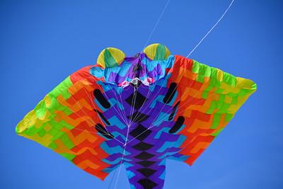 SPI Kite Festival Day 2