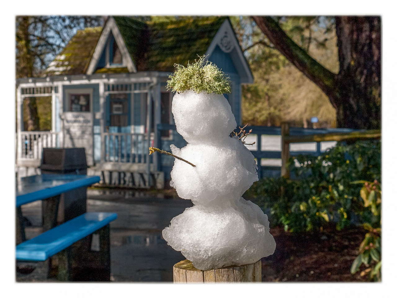 Somebody has built a minature snowman which I top with a tuft of moss i find on the ground.