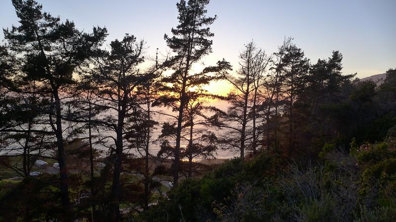 Along the Kirk Creek trail, Big Sur, April 2016.