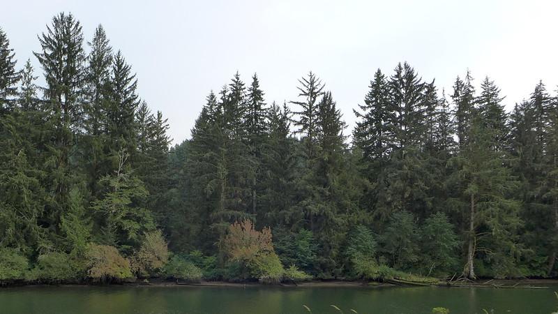 The Siuslaw River near Florence, Oregon, 2015.