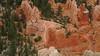 Trail Below Rim of Bryce Canyon, Utah , 2013.