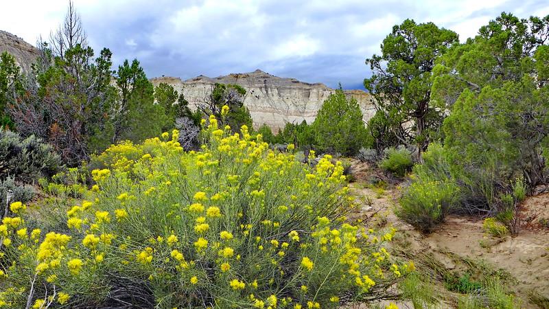 Kodachrome Basin State Park, Utah, 2013.