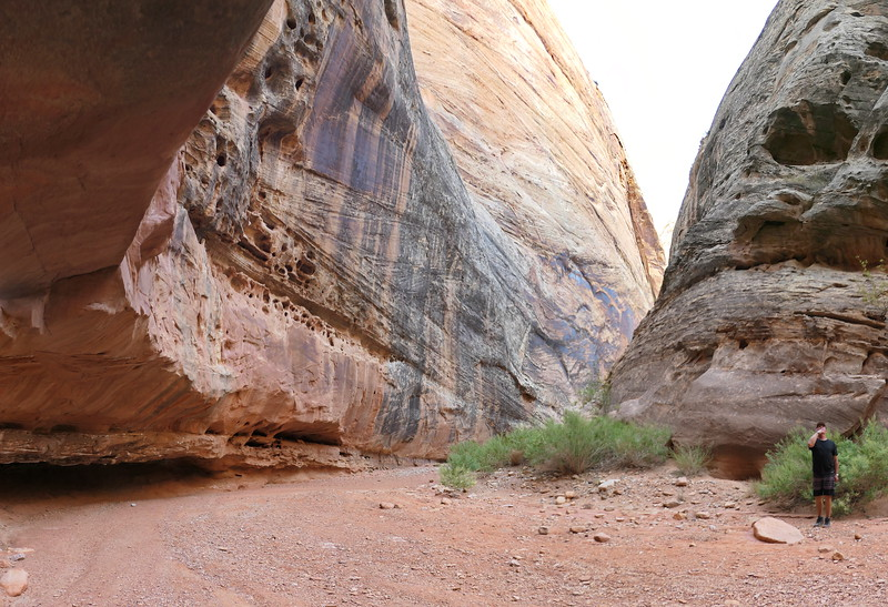 Grand Wash, Capital Reef National Park, 2020.