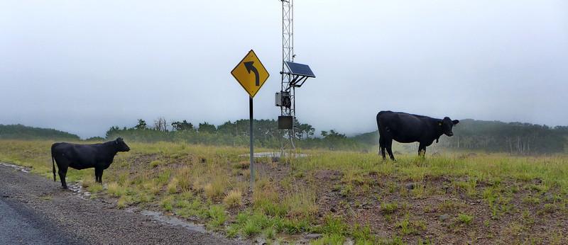 Utah SR 12 near Lower Brown's Reservoir, 2013.