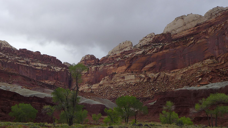 Near the Visitor's Center at Capital Reef