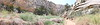 Cottonwood Narrows South, Utah, 2021.