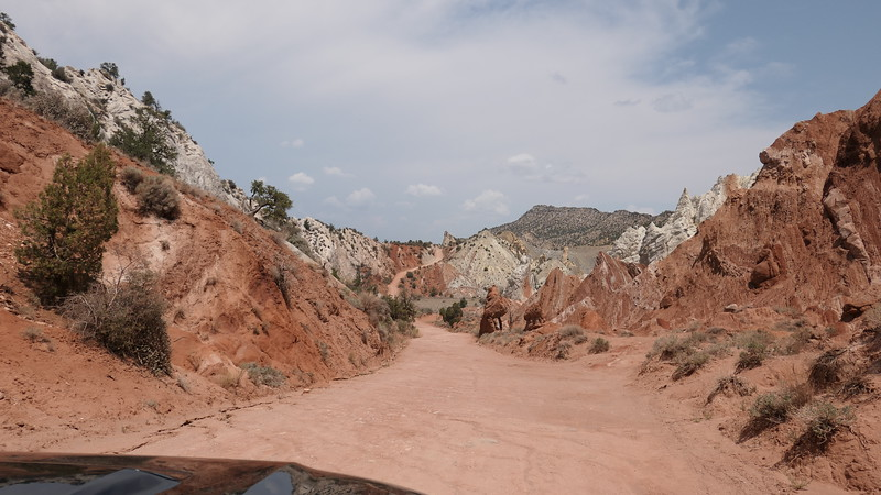Cottonwood Canyon Road, Utah, 2021.