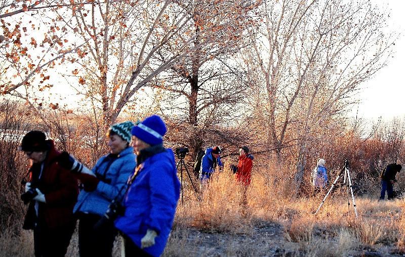 Bosque / Nancy Huguenard:  Winslow workshop participants hard at work Jan 2014