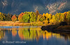 Oxbow Bend, Fall Colors, Snake River, Grand Teton National Park, Wyoming, USA, North America