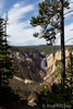 Lower Falls from Artist Point in the Grand Canyon of the Yellowstone by Rod Kitchin