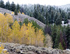 Fall and Winter- Aspens and Snow by Karen Geisel