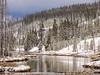 Snowy meadow by Carol West