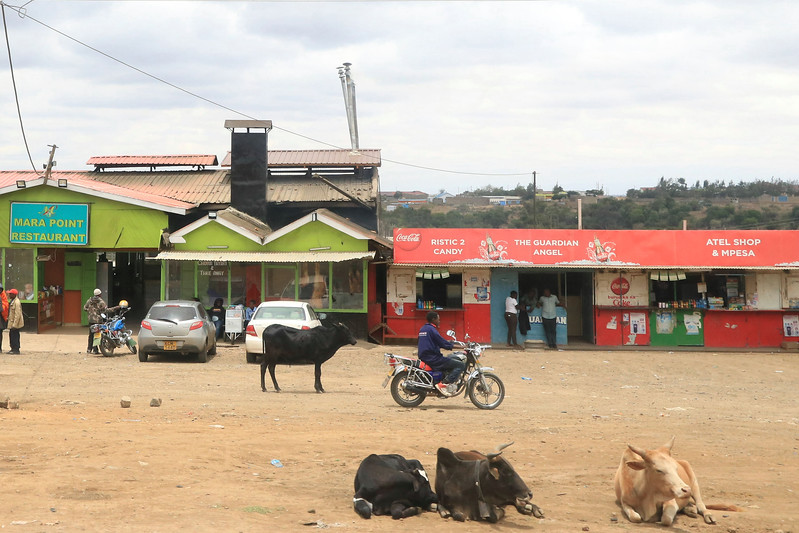 This was part of a very busy town with cars and trucks and people but also wandering cows, goats and chickens. It was so foreign to see the mix of businesses, people and animals in the places we passed.  Photo by Leah Bensen