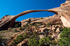 Landscape Arch by Skip Slocum.jpg