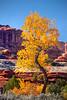 Canyonlands National Park, near Wooden Shoe Arch, by Karen Frair, October 18, 2012