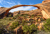 Landscape Arch by John Reckleff