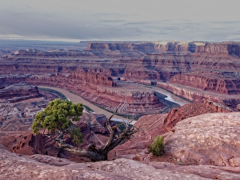 Dead Horse Point State Park photo by Lucy Reckleff