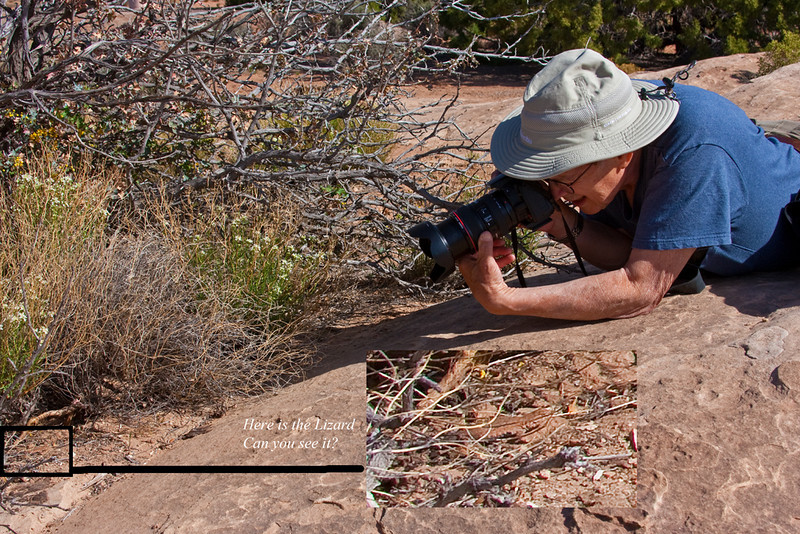 Bob Photographing a Lizard, Needles District, Canyonlands National Park, Utah.  Lizard has been enlarged and it is still difficult to see