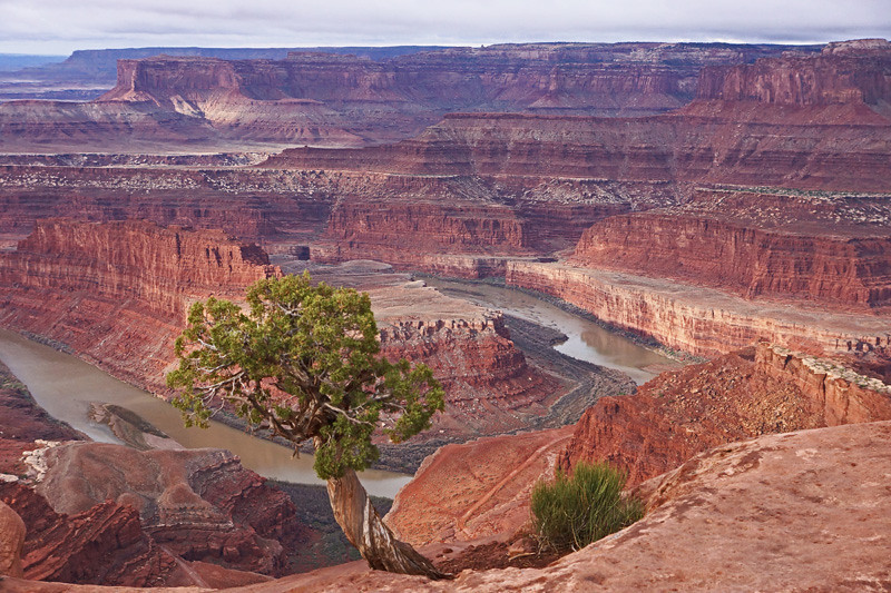 Dead Horse point by David Helmer