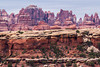 Canyonlands Needles by Rob Wareham