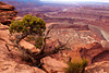 Dead Horse Point 3 by Vicki Dolce
