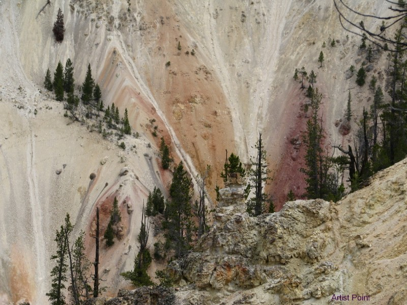 Artist Point Yellowstone Canyon by Sylvia Broussard