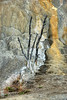 """""""Sentinel at Orange Spring Mound"""" by John Palmer"""