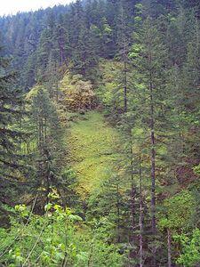 Oregon Day 1 use 018