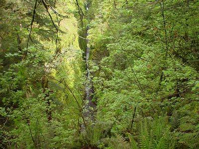 Oregon Day 1 use 014