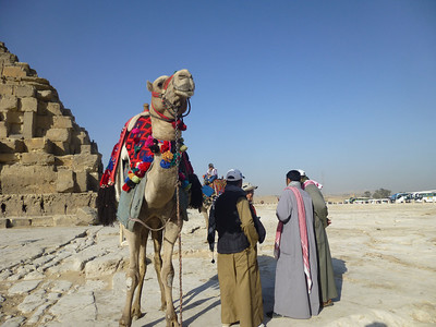 06 Giza Pyramids & Sphinx 050