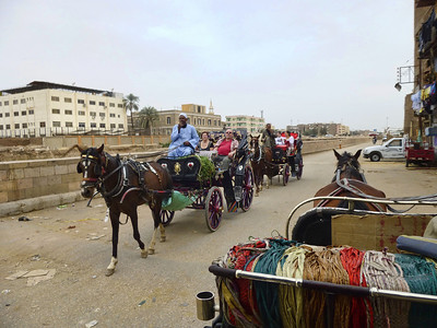 25 Carriage Ride in Luxor 361