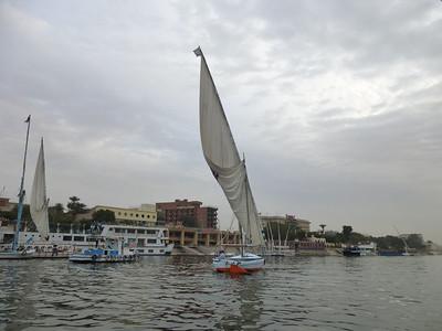 27 Felucca Sailing 368
